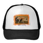 Attitudes Trucker Hat