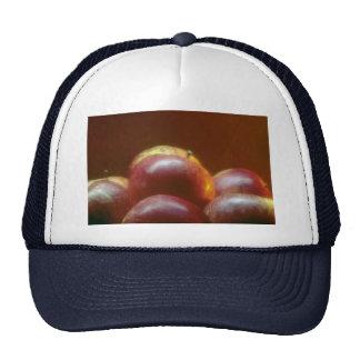 Attractive Apples Mesh Hat