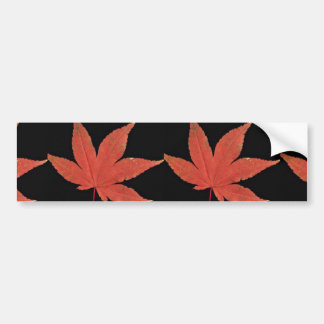 Attractive Japanese maple leaf Bumper Sticker