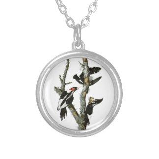 Aububon's Ivory-billed Woodpecker in Ash tree Round Pendant Necklace