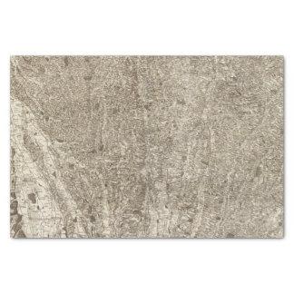 Auch Tissue Paper