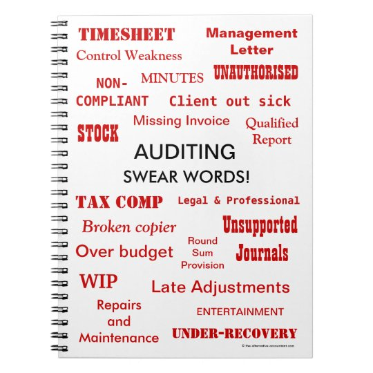 Auditing Swear Words Rude Auditor Words and Terms
