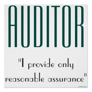 """Auditor: I Provide Only Reasonable Assurance"" Poster"