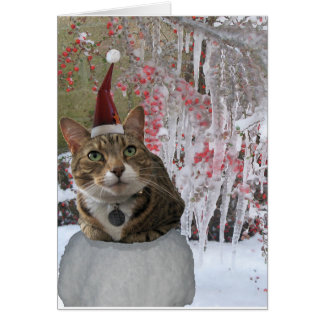 Audrey the cat greeting card