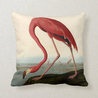 Audubon American Flamingo Cushion