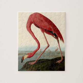 Audubon American Flamingo Jigsaw Puzzle