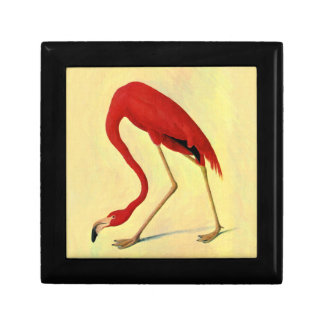Audubon American Flamingo Painting Gift Box