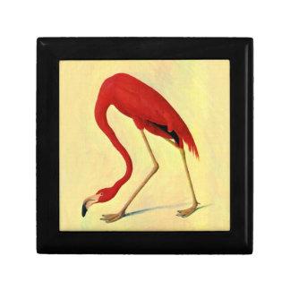 Audubon American Flamingo Painting Gift Box