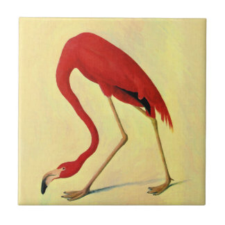 Audubon American Flamingo Painting Tile