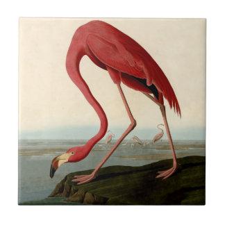 Audubon American Flamingo Tile