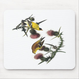 Audubon American Goldfinch Mousepads