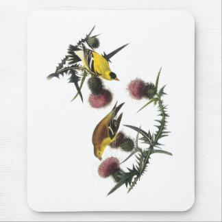 Audubon American Goldfinch Mouse Pad