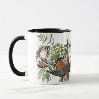 Audubon American Kestral Birds Wildlife Mug