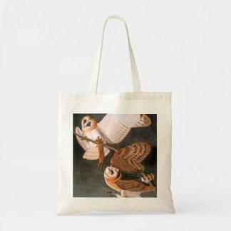 Audubon: Barn Owl