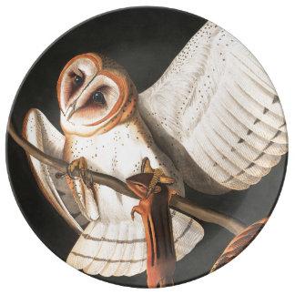 Audubon Barn Owl Birds Wildlife Porcelain Plate