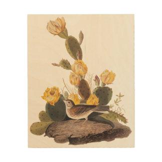 Audubon Bay Winged Bunting and Prickly Pear Cactus Wood Print