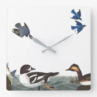 Audubon Birds Wildlife Animals Collage Wall Clock