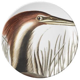 Audubon Bittern Bird Wildlife Porcelain Plate