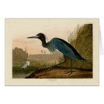 Audubon Blue Crane Heron Birds of America