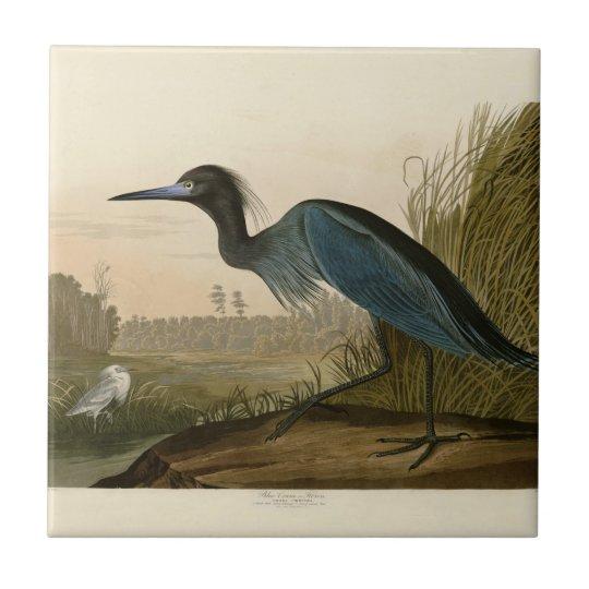 Audubon Blue Crane Heron Birds of America Tile