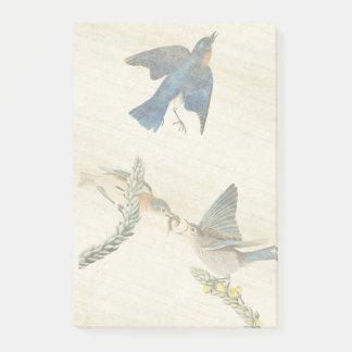 Audubon Bluebird Birds Flowers Post It Notes