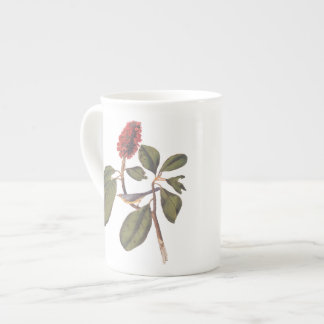 Audubon Bonaparte Flycatcher in Magnolia Tea Cup