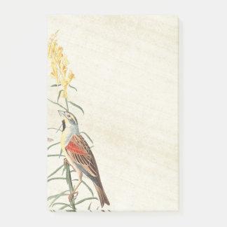 Audubon Bunting Bird Wildlife Post It Notes