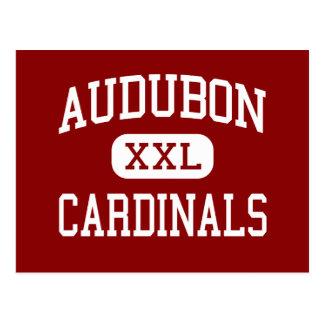 Audubon - Cardinals - Middle - Milwaukee Wisconsin Postcard