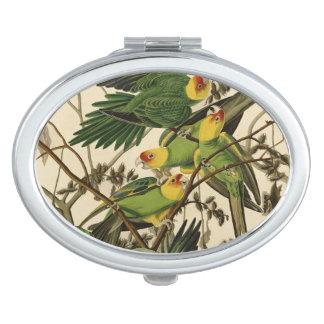 Audubon Carolina Parrot Print Birds of America Vanity Mirrors