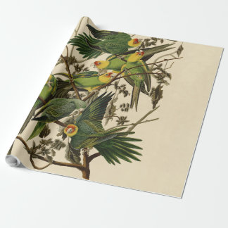 Audubon Carolina Parrot Print Birds of America Wrapping Paper