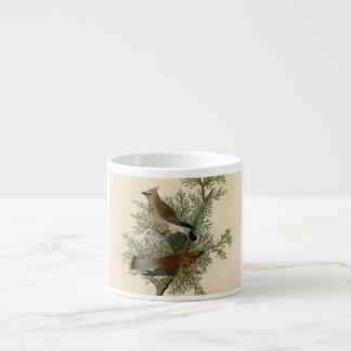 Audubon Cedar Waxwing Bird Espresso Mugs