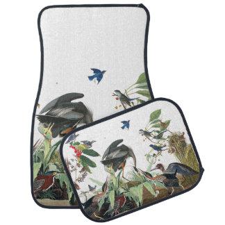 Audubon Collage Heron Bluebird Bird Car Floor Mats