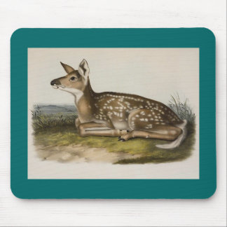 Audubon - Common American Deer - Fawn Mouse Pad