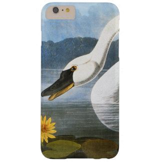 Audubon: Common Swan Barely There iPhone 6 Plus Case
