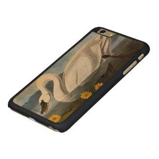 Audubon: Common Swan Carved Maple iPhone 6 Plus Case
