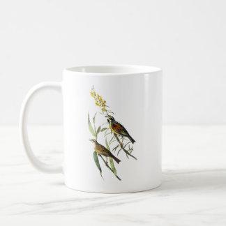 Audubon Dickcissel Coffee Mug