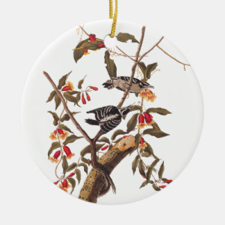 Audubon Downy Woodpecker Pair Christmas Ornament