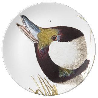 Audubon Duck Bird Wildlife Porcelain Plate