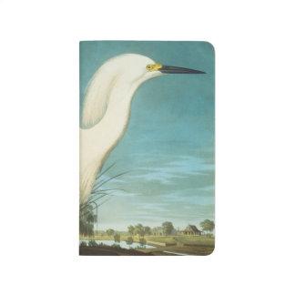 Audubon: Egret Journal