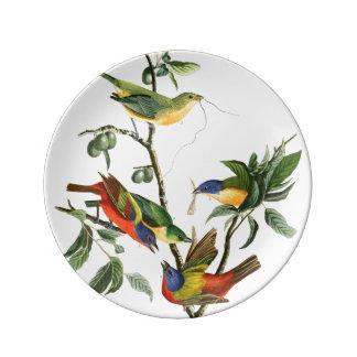 Audubon Finch Birds Wildlife Porcelain Plate