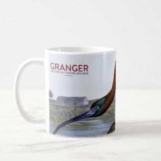 Audubon: Glossy Ibis Basic White Mug