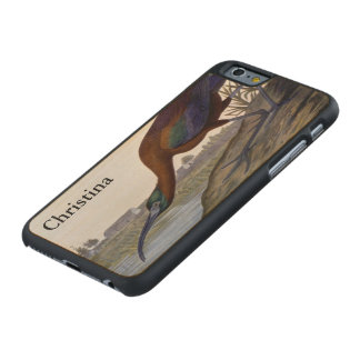 Audubon: Glossy Ibis Carved Maple iPhone 6 Case