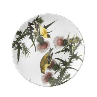 Audubon Goldfinch Bird Wildlife Porcelain Plate