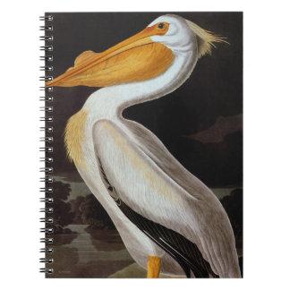Audubon: Great White Pelican Notebook