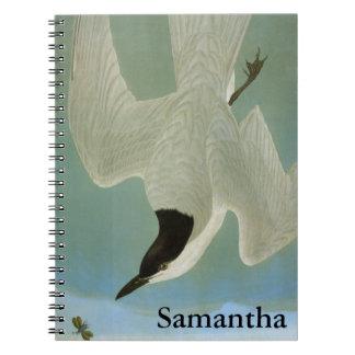 Audubon: Gull-Billed Tern Notebooks
