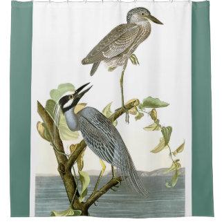 Audubon Heron Birds Animal Wetlands Shower Curtain