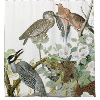 Audubon Herons & Dove Birds Animal Shower Curtain