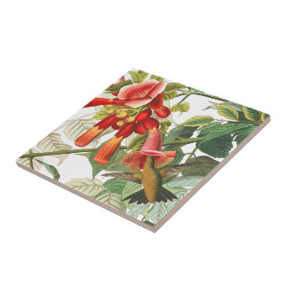 Audubon Hummingbird Birds Wildlife Floral Tile