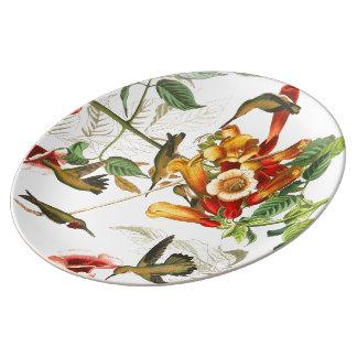 Audubon Hummingbird Birds Wildlife Porcelain Plate