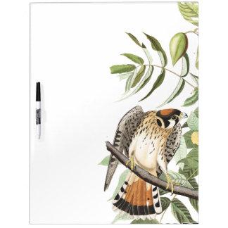 Audubon Kestral Bird Wildlife Dry Erase Board